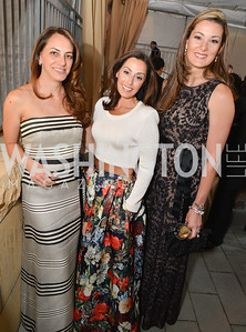 Jessica Lang, Lindsay Ellenbogen, Suzi Henderson, 2014 Annual Phillips Collection Gala, Friday May 16, 2014, Photo by Ben Droz