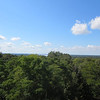 View from Grand Gulf observation tower, looking south towards Natchez