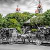 Horse Carts of Granada 2