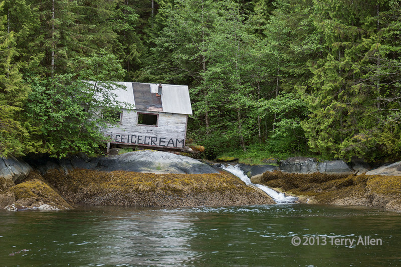 """Ruins of the ice cream shack, Butedale Creek, Princess Royal Island, British Columbia<br /> <br /> Looks like it must have been an inviting place to stop for ice cream in the past!  The power plant and the ice plant were located upstream of this small shack, and the only local resident """"Butedale Lou"""" keeps a turbine running on the stream to generate a small supply of electricity.  See here for info on Butedale Lou and his cat: <a href=""""http://waggonerguide.com/content/profile-lou-simoneau"""">http://waggonerguide.com/content/profile-lou-simoneau</a>.  His house can be seen here: <br /> <a href=""""http://goo.gl/71JcbA"""">http://goo.gl/71JcbA</a><br /> <br /> The site was abandoned when it became uneconomic to process fish there.  Since the buildings are wood frame they gradually rot and return to nature, much as the aboriginal totem poles in the area were designed to do.<br /> <br /> Several more photos from Butedale can be seen here: <a href=""""http://goo.gl/iLN7oI"""">http://goo.gl/iLN7oI</a><br /> <br /> 29/10/13  <a href=""""http://www.allenfotowild.com"""">http://www.allenfotowild.com</a>"""