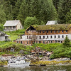 Butedale with remains of hotel/bunkhouse.  The remains of the general store and post office are in front of the bunkhouse building. Princess Royal Island, mid-coast British Columbia