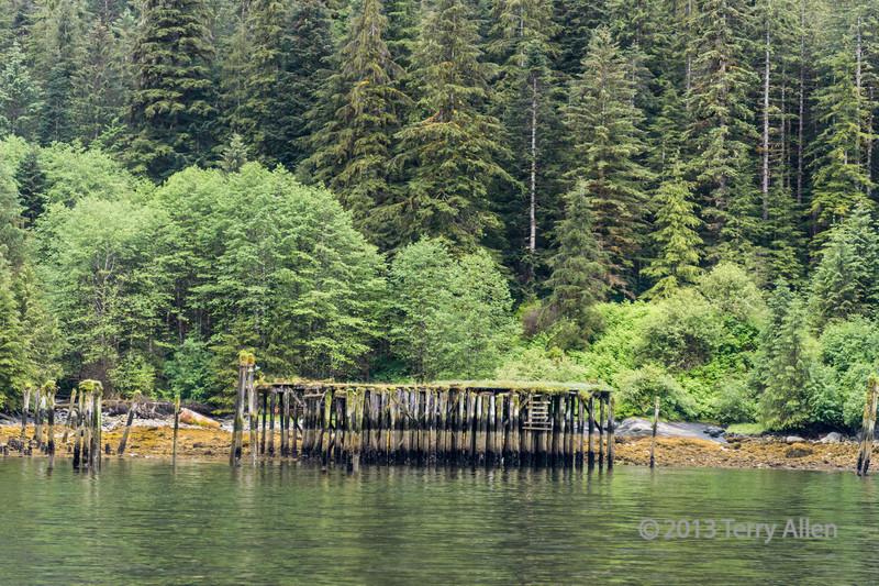 Remains of old wharf with boiler on beach, Butedale, Princess Royal Island, British Columbia