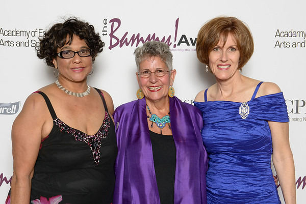 2013 Bammy Awards
