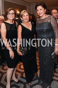 Katayoon Shaya, Fahimeh Bagheri, Nina Idriss