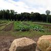 5 Days- Snug Harbor Heritage Garden- Staten Island
