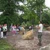 5 days - Snug Harbor Heritage Garden- Staten Island
