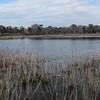 Bunker Pond