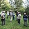 Birding in Strawberry Fields, Central Park
