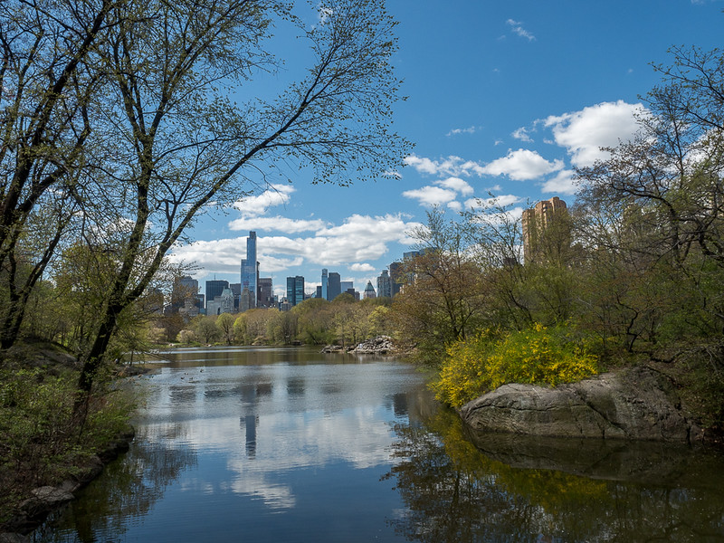 Central Park in the Spring