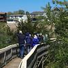 Mt Vernon Boardwalk