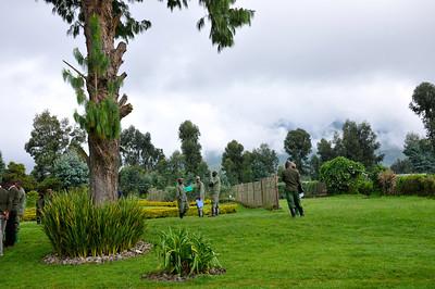 Rwanda: Gorilla Trek April 2014