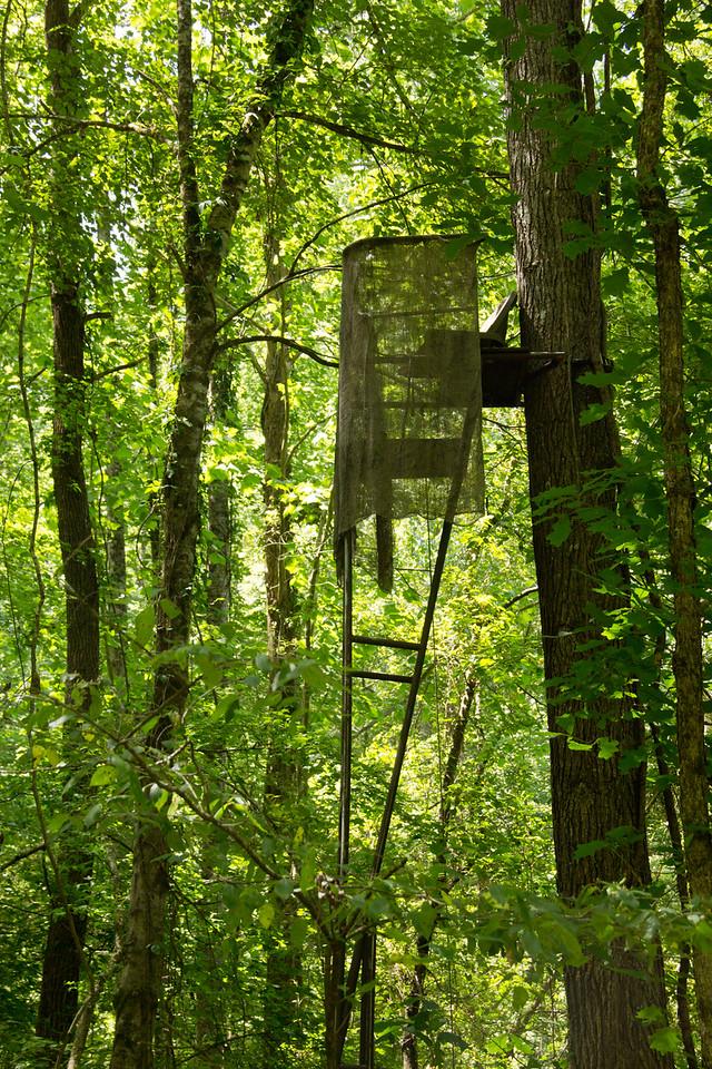 woods-deerstand2
