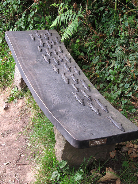 A charming memorial bench near Carleon Cove - it looks as if the fish were carved out the solid, not fixed on afterwards!