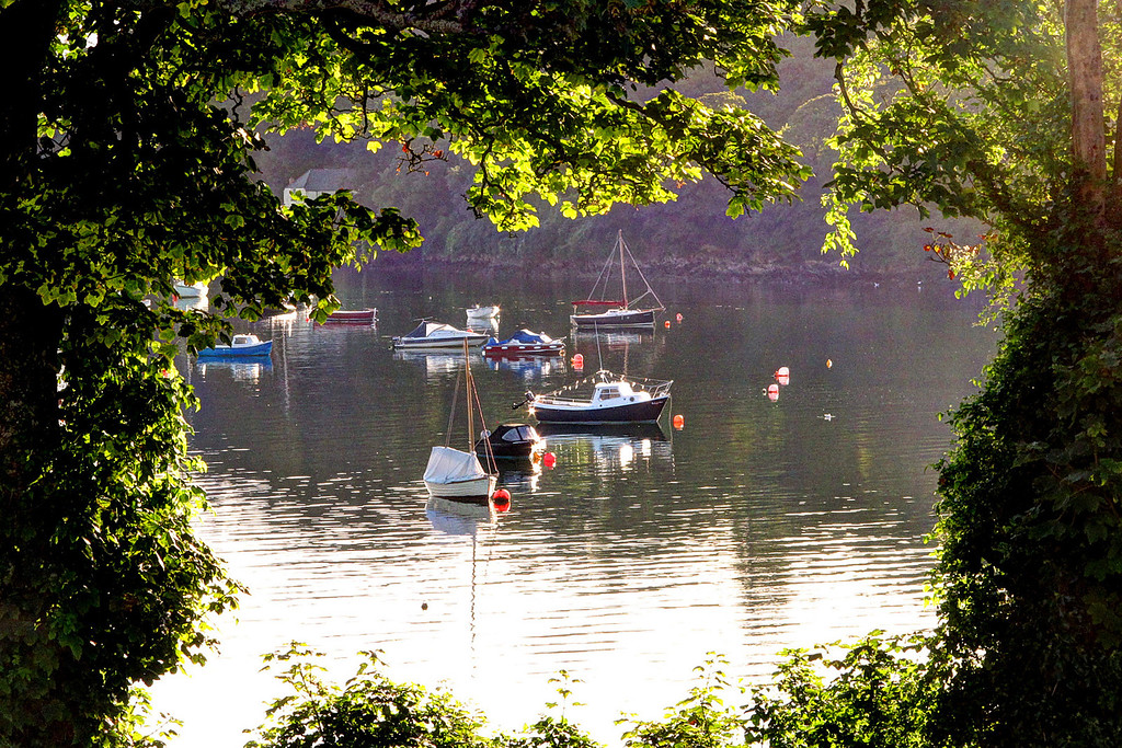 A bright morning at Helford Point - taken from outside the B&B.