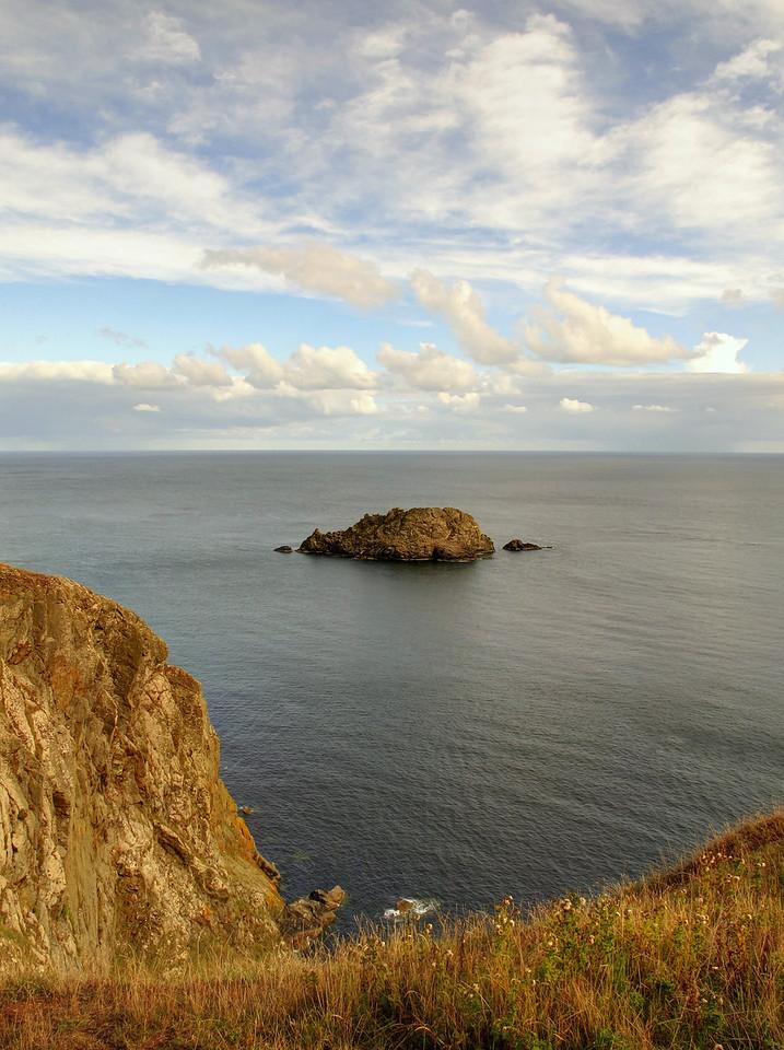 Gull Rock off Nare Head