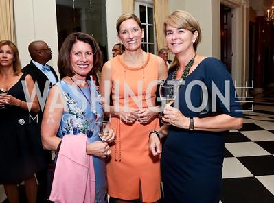 Bobbi Smith, Sandra McCoy, Elsa Walsh. Photo by Tony Powell. Sasha Bruce Youthwork's Dinner. British Amb.'s Residence. September 23, 2014