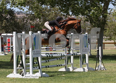 2014 Thoroughbred Classic Horse Show June