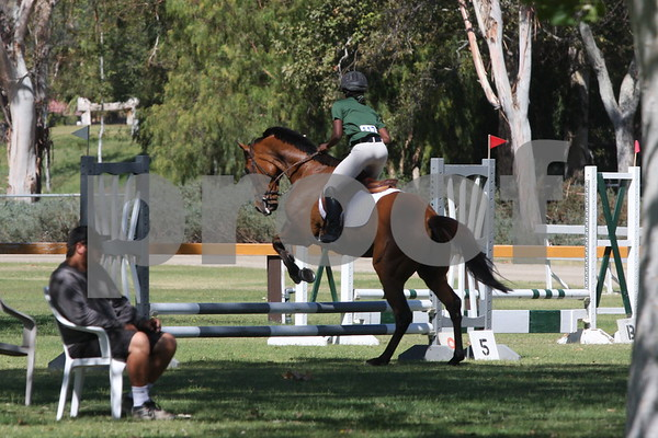 Thoroughbred Classic Horse Show June 2014
