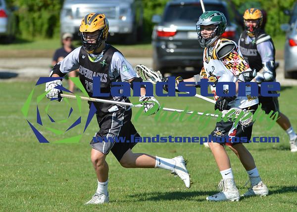 Silverbacks Lacrosse
