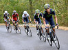 Andrej Amador is leading a series of accelerations by Movistar on a nasty climb called the Puerto del Tomo...