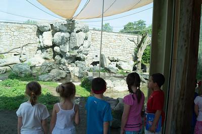 5-30-2013 Stone Zoo 002