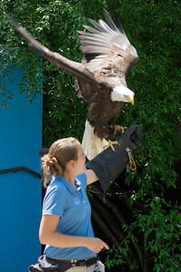 5-30-2013 Stone Zoo 016
