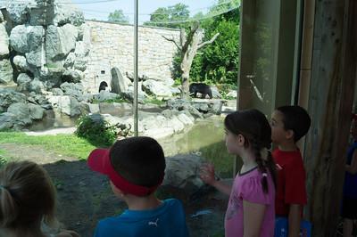 5-30-2013 Stone Zoo 001
