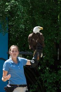 5-30-2013 Stone Zoo 014