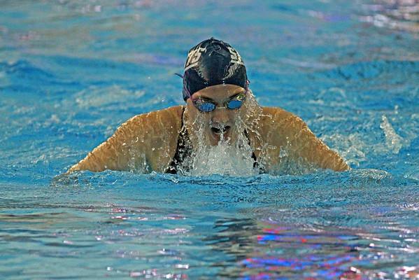 2014 MHSAA Swim Championships