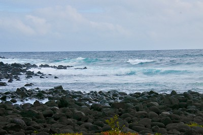 EC 12 16 019 Waves