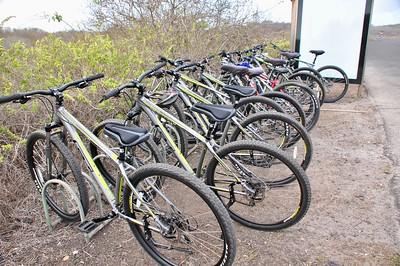 EC 12 16 016 Our bikes