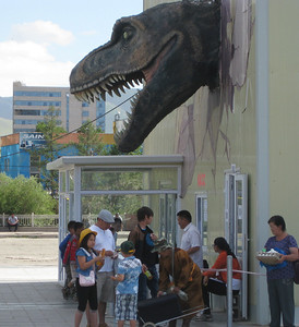 Tarbosaurus bataar returns from USA to a warm welcome. Skeleton on display in Sukhbaatar Square.
