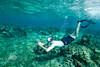 Underwater Photography - Mahagony Bay, Roatan - Photo by Pat Bonish