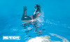 Belly Dance - Underwater Photography by Pat Bonish, Bonish Photo