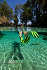 Split Shot of Snorkeling in Crystal River Florida - Photo by Pat Bonish