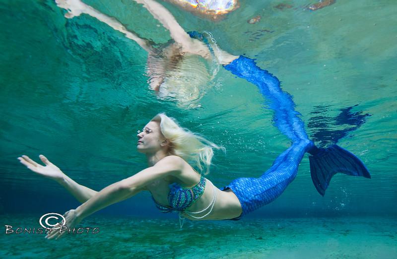 Dancing Underwater - Photo by Pat Bonish, Bonish Photo