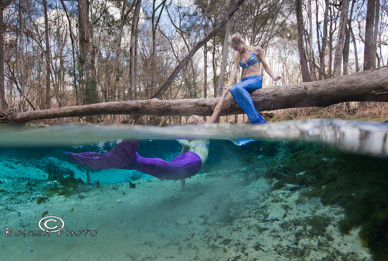 Mermaids having fun in the springs - Photo by Pat Bonish, Bonish Photo