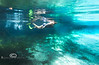 Surface Reflections - Snorkeling in Crystal River Florida - Photo by Pat Bonish