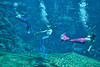 Trio of Mermaids - Weeki Wachie Springs Florida - Photo by Pat Bonish