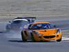 Orange Lotus in Lead_Painting 12x9 upload