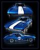 Blue Vet 11x14 300 dpi orig