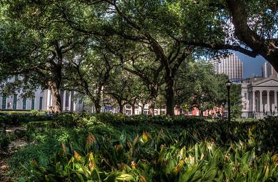 park-trees-2-1