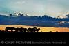 Pilot Butte horses, Green River WY (13)