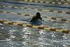 20131112-Practice-Swim1345