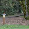 Dog Creek Dog Creek Trail