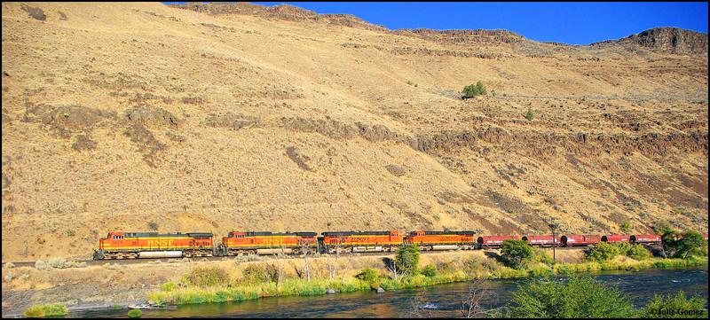 Train at Sunrise Along the Deschutes River