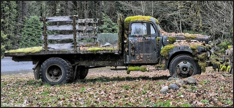 This is what happens in the Northwest if you don't wash your truck! <br /> <br /> Sandy, Oregon.  (2013)