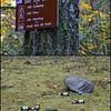 Litter Along the Trail