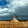Rain and Sawdust