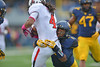 OCTOBER 19 - MORGANTOWN, WV: WVU cornerback Daryl Worley (7) tackles a Texas Tech ball carrier during the Big 12 football game October 19, 2013 in Morgantown, WV.